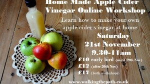 apple cider vinegar workshop
